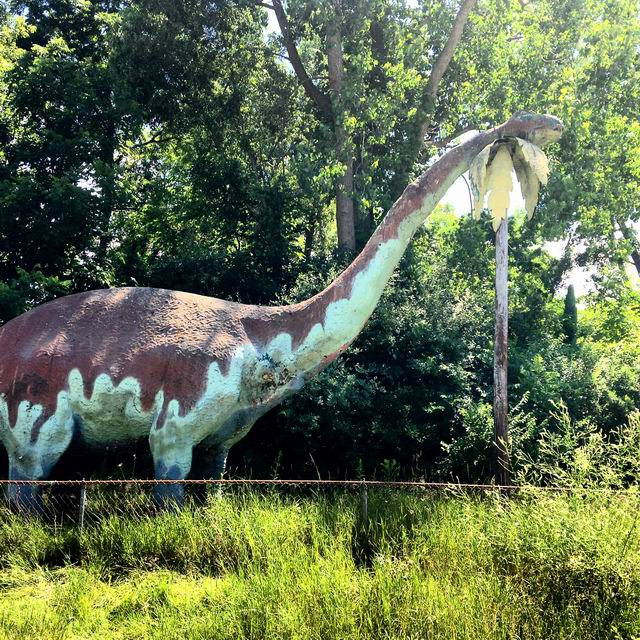 Irish Hills Area - PREHISTORIC FOREST SUMMER 2014